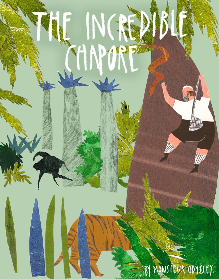 Children Book Cover Ideas : The incredible chapore just beth